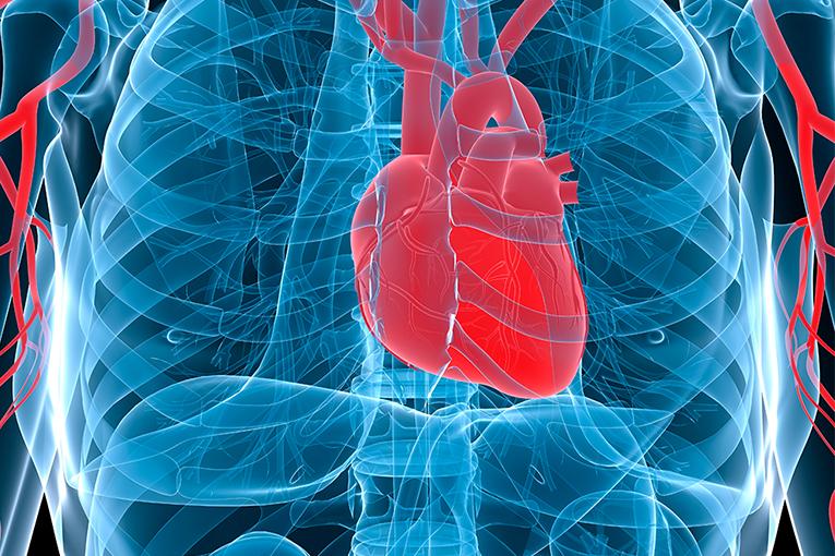 Η καρδιά σας
